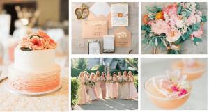 boda con tematica de color